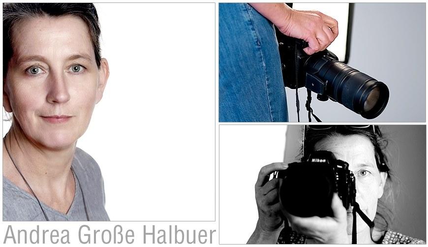 Andrea Große Halbuer